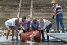 hr_2017_2_vukovar_clean-up_6-_mg_1964_c_grad_vukovar_miroslav_slafhauzer.jpg?itok=CpwEB5l8